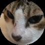 Profile picture of folieadeux