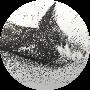 Profile picture of llamapoet