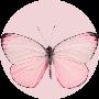 Profile picture of peach