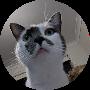 Profile picture of blurbel