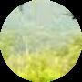 Profile picture of LazyPeachPie