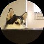 Profile picture of Totally Bichoso
